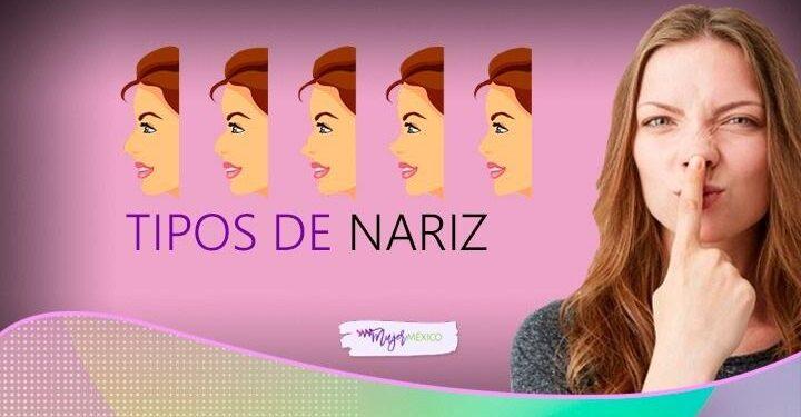 ¿Qué tipos de nariz hay? Conoce cuál es la tuya