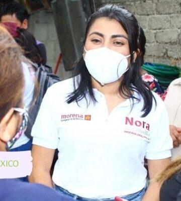 En el Congreso mi voz seguirá siendo libre: Nora Merino
